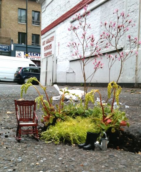 The Pothole Garden Project - guerilla gardening in the streets of London, transforming potholes into miniature gardens