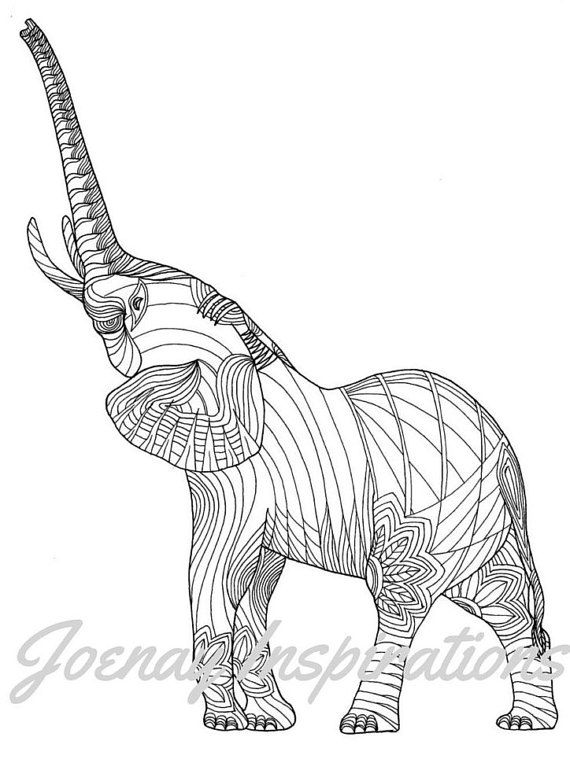 Animal Kingdom Colouring Book Printable 12 Best Pictures About Coloring For Adults