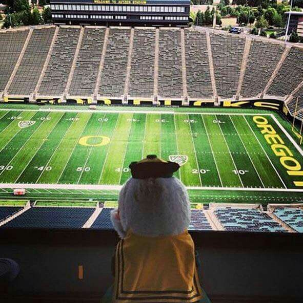 Waiting for Oregon Ducks Football