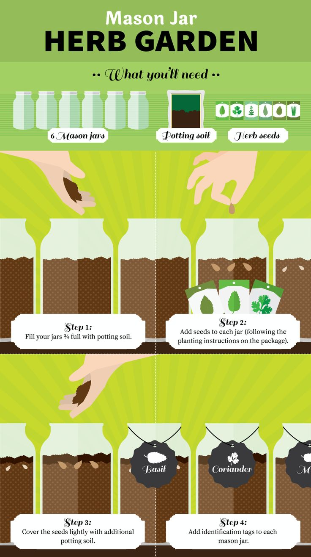 Mason Jar Madness: Grow an Herb Garden in a Jar