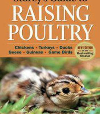 Storey's Guide To Raising Poultry 4th Edition: Chickens Turkeys Ducks Geese Guineas Gamebirds PDF