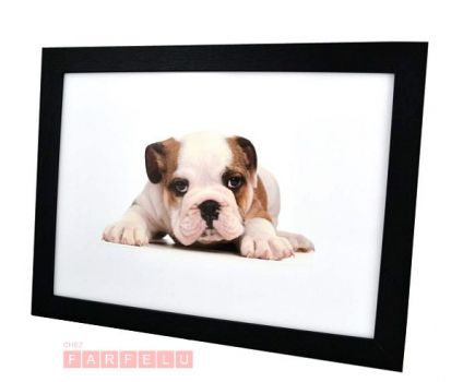 Plateau coussin chien bulldog | acceuil