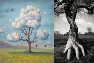 Copacii, pomii, arborii din vise sunt mesageri ai subconștientului și reprezintă o persoană reală, o ființă spirituală ori una care-ți împă...