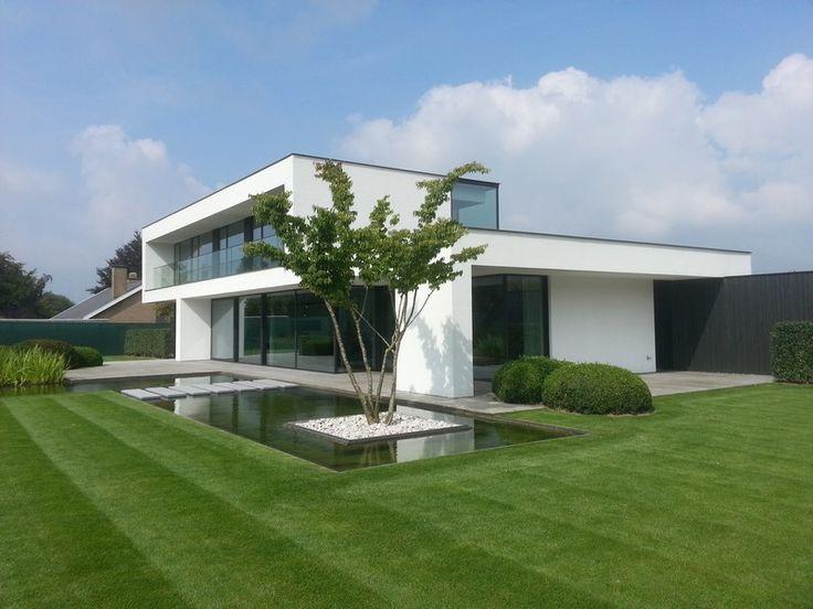 Zelkova serrata meerstammig, geweldige villa, prachtige strakke tuin