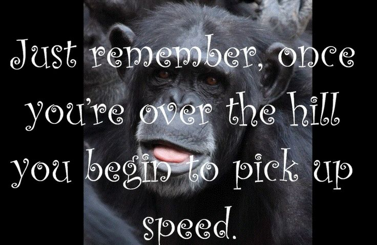 Funny Verses For Male Birthday Cards ~ Funny monkey pics with quotes birthday wishes for