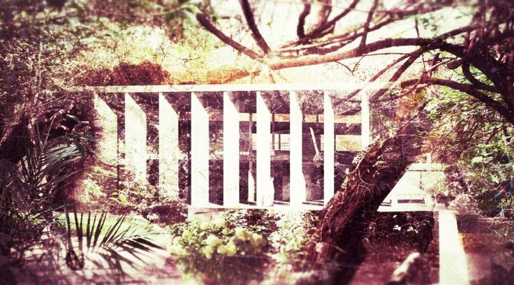 17 best images about barrag n on pinterest gardens for Jardin 17 luis barragan