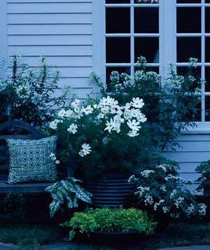 Pin by marie svehlak on gardening pinterest for Moon garden designs