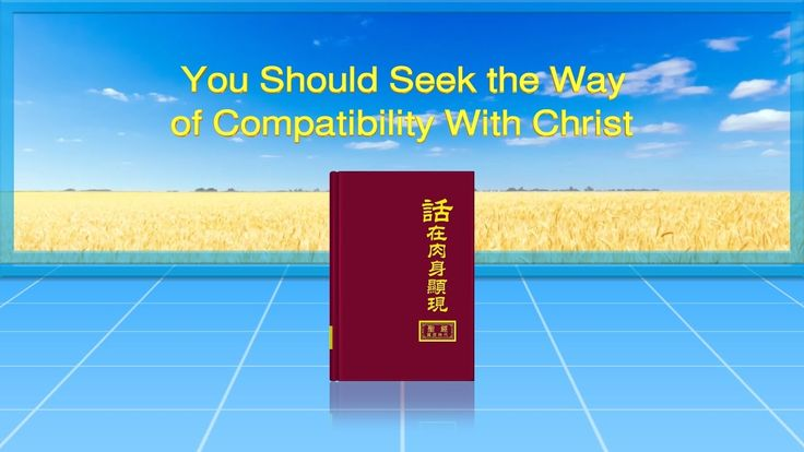 """Almighty God's Word """"You Should Seek the Way of Compatibility With Chris..."""