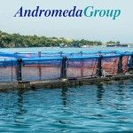 Andromeda Group is one the fastest growing group of companies in the Mediterranean Aquaculture industry, with activity across Europe and with worldwide export power as well. - See more at: http://aquaculturedirectory.co.uk/an-emerging-power-in-the-mediterranean-aquaculture-industry/#sthash.IVuEZKzf.dpuf