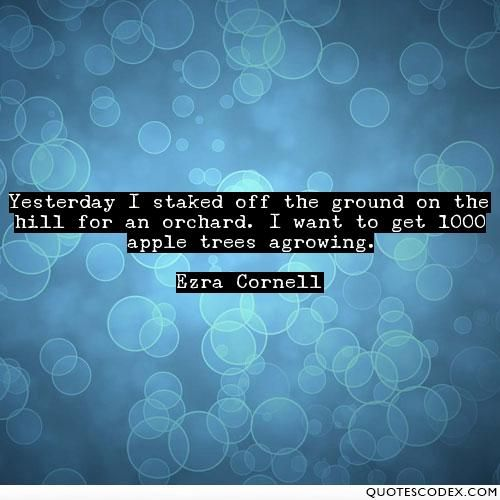 Yesterday I staked off the ground on the hill for an orchard. I want to get 1000 apple trees agrowing. - Quotes Codex