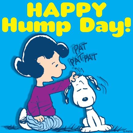 Happy Hump Day!: Hump Day, Happy Quotes, Charli Brown, Happy Hump, Funny Stuff, Humpday, Peanut Cartoon, Snoopy, Peanut Gang