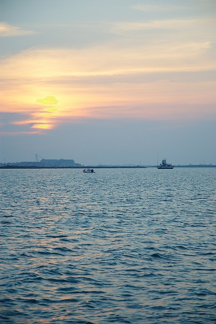 240 best images about my port aransas on pinterest for Port aransas jetty fishing report