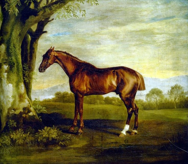 D.W.C. Horses - George Stubbs