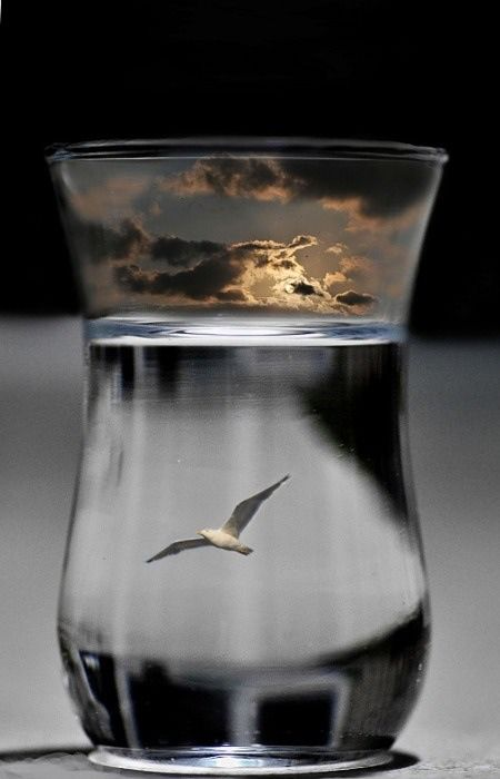 The sky in a glass... Love to do this but have water in glass acting as ocean and put the bird in the sky