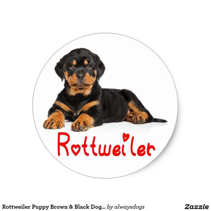 Rottweiler Puppy Brown & Black Dog Red Love Classic Round Sticker