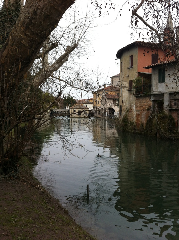 The nature in the heart of the town :) #portogruaro #venice #italy