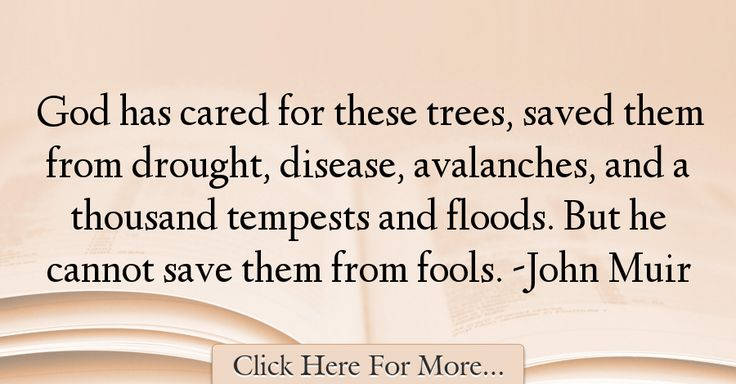 John Muir Quotes About God - 28014