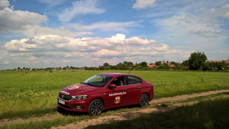 I love my DXN coffee business car, Fiat Tipo Opening Edition 2016. What is DXN? Learn here: http://dxnproducts.com/