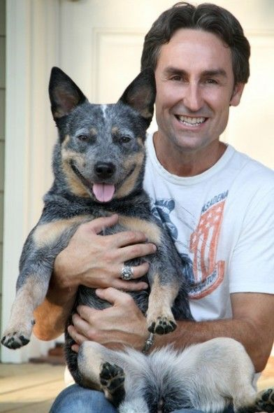 American Pickers Star Mike Wolfe. Never really cared for this guy, but I do now that I know he has a Cattle Dog!! :)