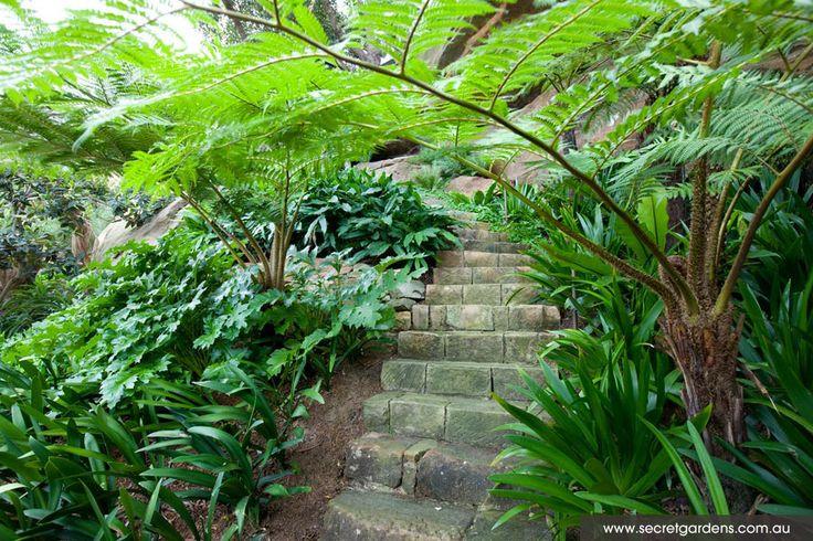 Landscape architecture and design: Seaforth, Sydney