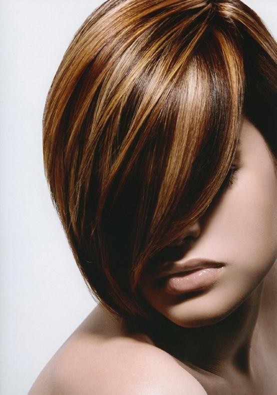 Copper highlights on black hair
