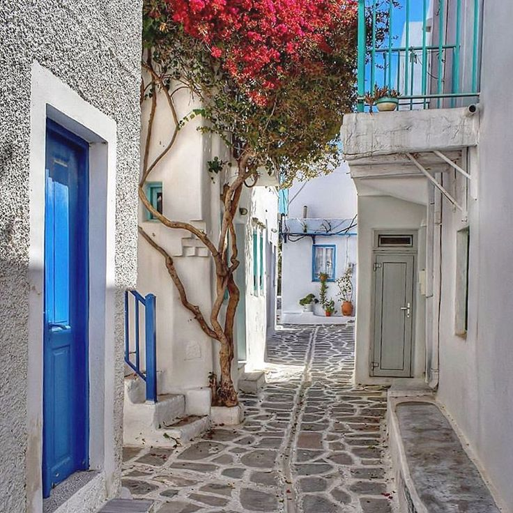 island of Paros (Πάρος) So beautiful colorful alley ❤️