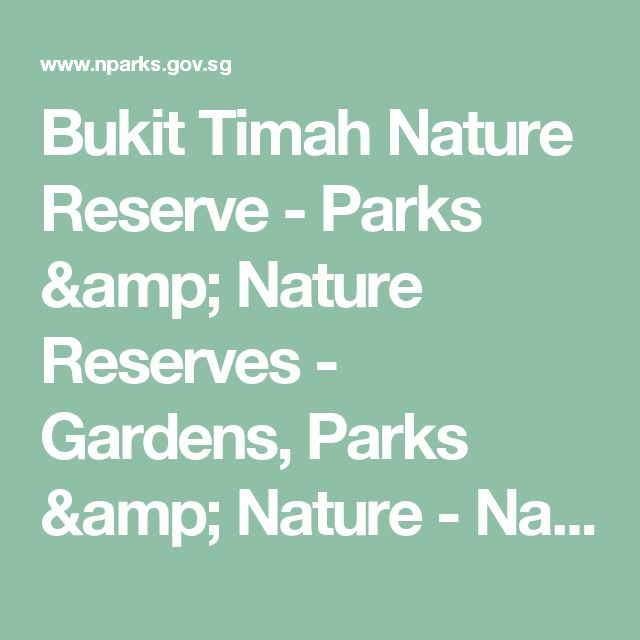 Bukit Timah Nature Reserve - Parks & Nature Reserves - Gardens, Parks & Nature - National Parks Board
