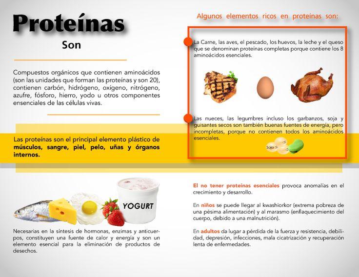 Díptico Reverso #Proteinas #Nutricion es Energía