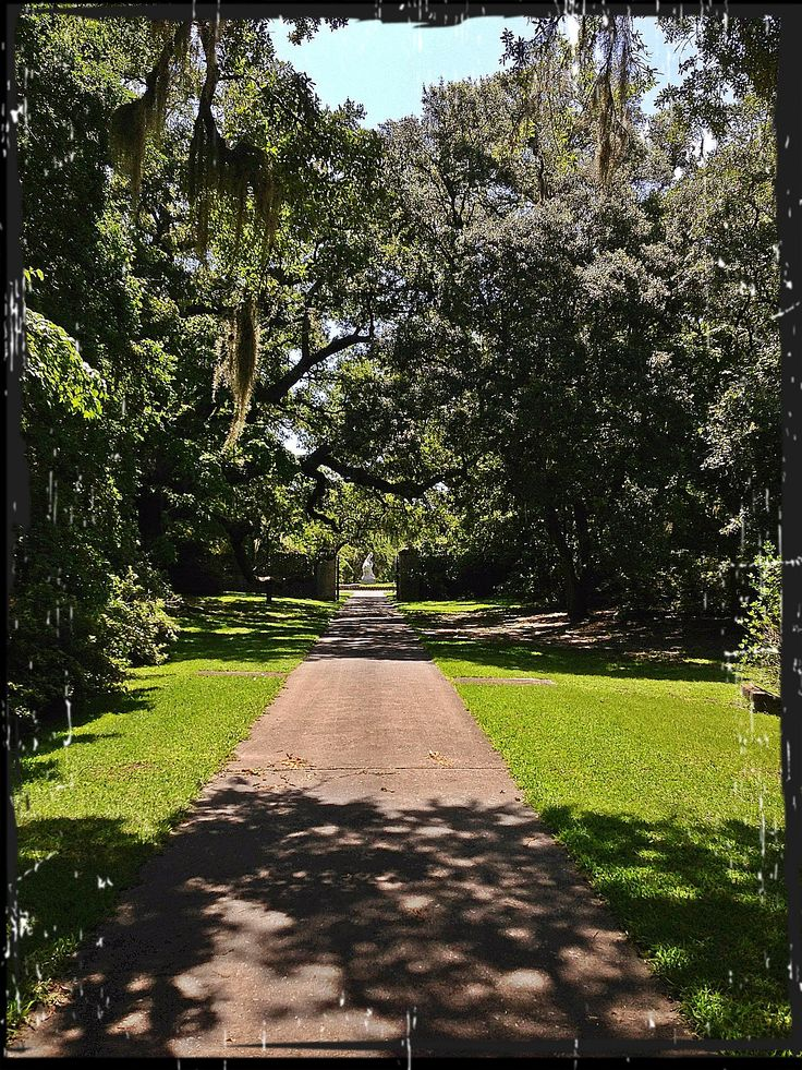 17 Best Images About Weddings At Brookgreen Gardens On Pinterest Gardens Garden Weddings And