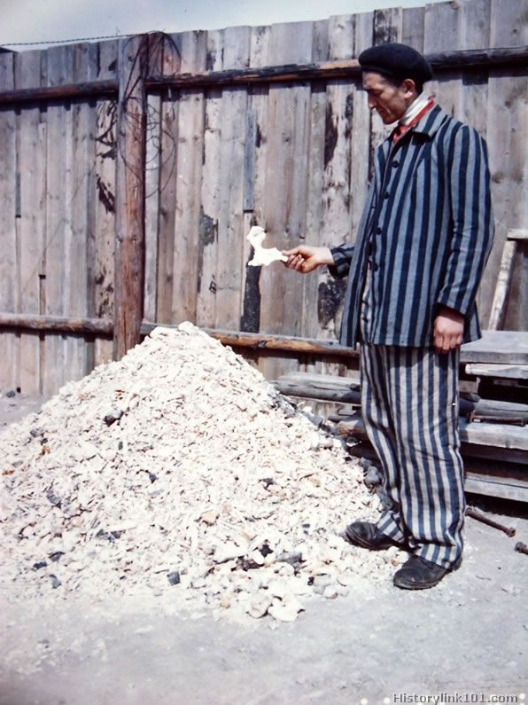 Atrocity.Buchenwald Concentration Camp. A prisoner at the Buchenwald Concentration camp holds a human bone as he stands in front of a pile o...