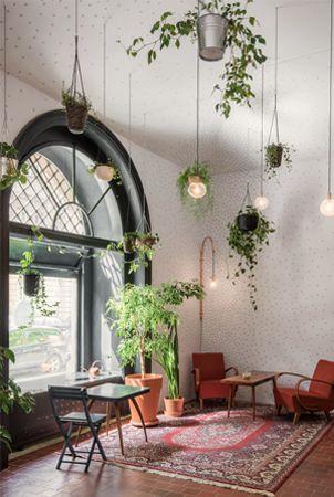 zelen v interieri