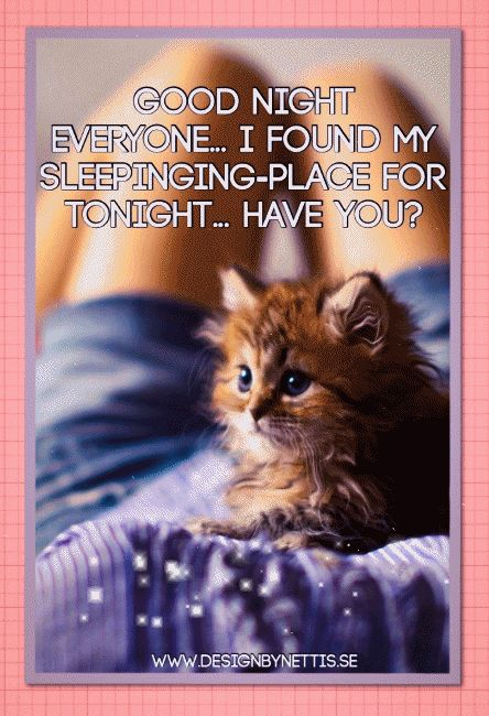 ♥ GOOD NIGHT  sister and all ,have a restful, peaceful sleep. God bless you all xxx♥