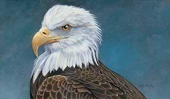 Bald Eagle Acrylic Eagles Pinterest