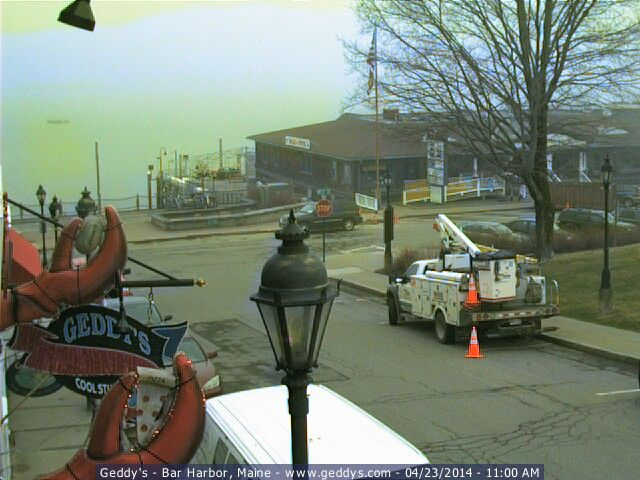 Geddys cam bar harbor live webcam