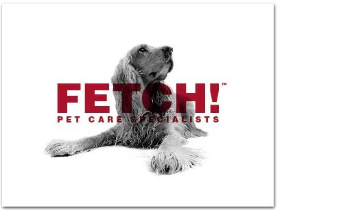 D Creative Studios - Portfolio - Fetch! Pet Care: GiftCertificate