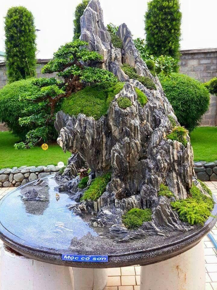 Brenda Rogers pinned this wonderful bonsai creation