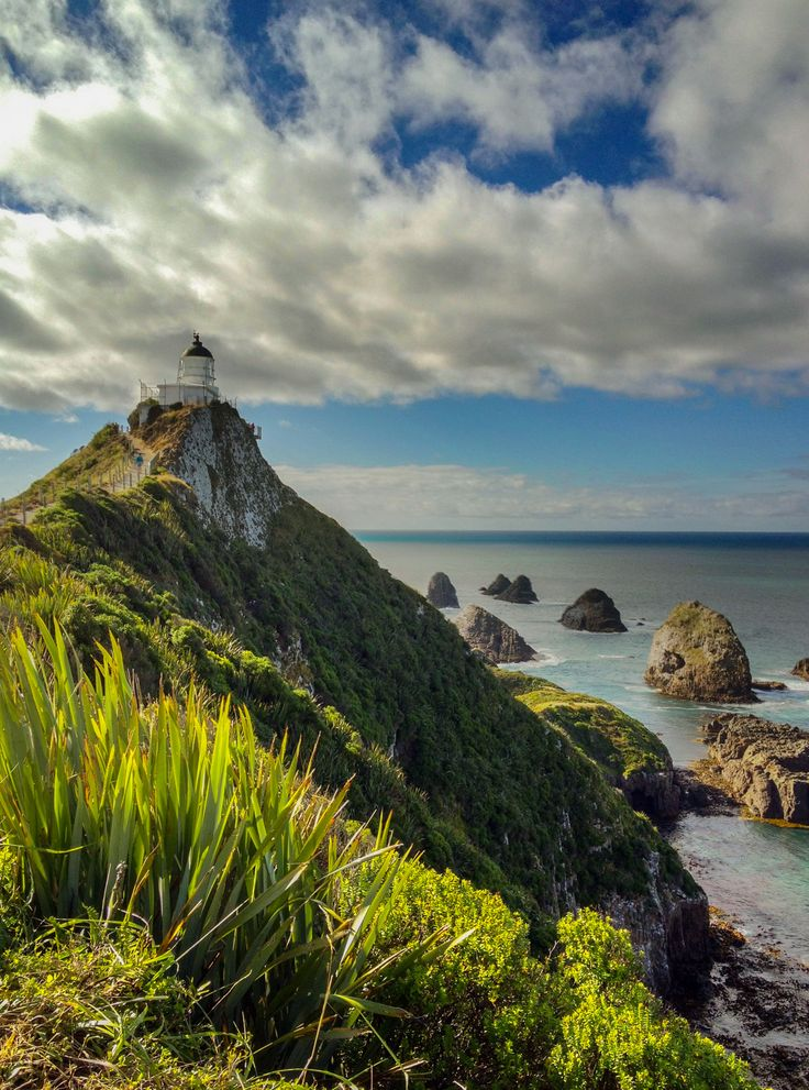 Nugget Point, New Zealand http://www.travelandtransitions.com/destinations/destination-advice/australia-south-pacific/travel-new-zealand-auckland-christchurch-wellington-the-southern-alps-and-lots-of-beautiful-nature/