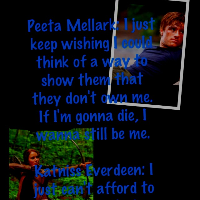 80 best images about hunger games quotes on pinterest