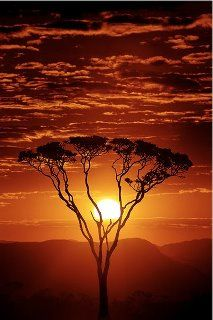 South African sunsets..you can't beat it!