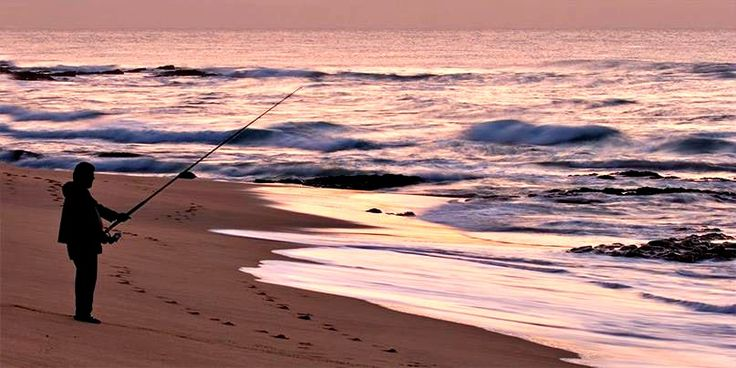 268 best images about gulf shores orange beach fort for Surf fishing gulf shores