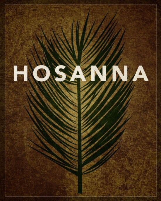 "So they took branches of palm trees and went out to meet him, crying out, ""Hosanna! Blessed is he who comes in the name of the Lord, even the King of Israel!"" (‭John‬ ‭12‬:‭13‬ ESV)"