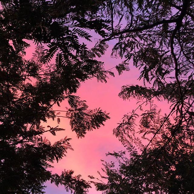 A glimpse of tonights sky. #sunset