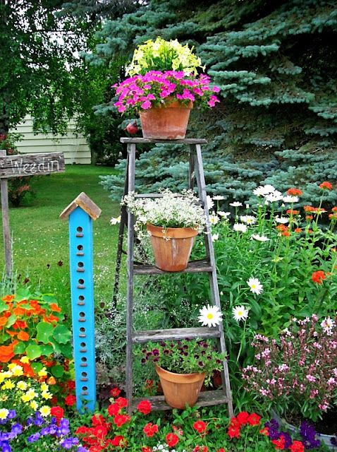 Bright colors: Flowers Gardens, Gardens Ideas, Flowers Beds, Organizations Clutter, Birds House, Gardens Junk, Step Ladder, Pinterest Ideas, Flowers Border