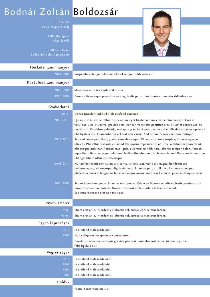 P3 Design CV