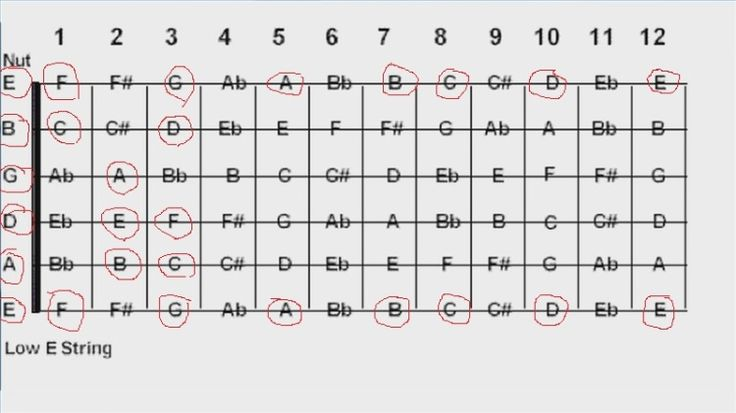 basic guitar fingering chart b a g see the above guitar string notes with red circles which. Black Bedroom Furniture Sets. Home Design Ideas