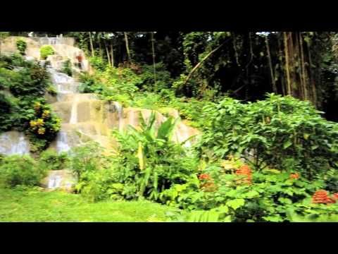 Coyaba Gardens - Best-kept Gardens in Jamaica. Coyaba means paradise in the language of Jamaica's first people, and this is as close to the Garden of Eden as you can get - Chukka.com