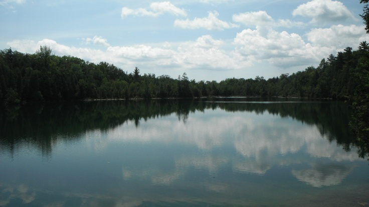 Crawford Lake Conservation Area (home of social snapping turtles)