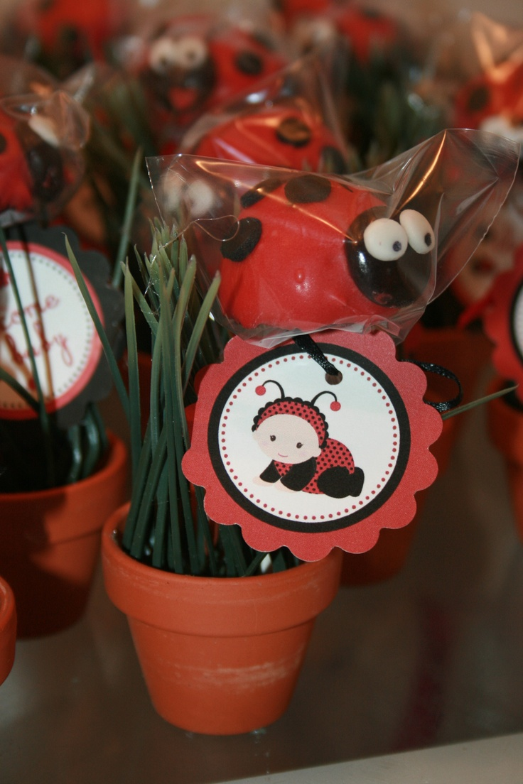 Lady bug party favors...baby shower  Someone please have a girl soon...I want to use this idea.