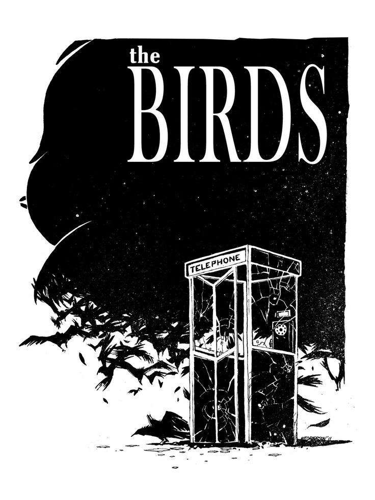 The Birds by Mike Henderson.