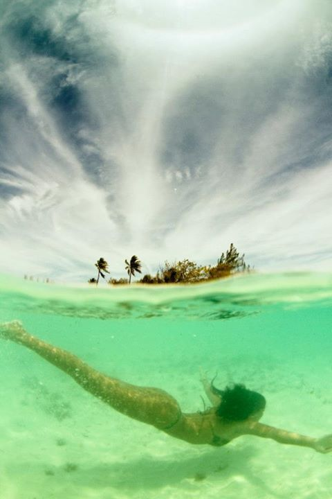 192 Best Images About Free Diving On Pinterest